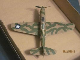 P-39 Airacobra: Top View by cloudyrainbow561
