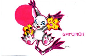Gatomon by XYZ888