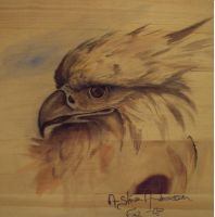 Eagle head on wood by Morieane