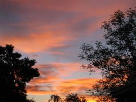 Arizona Sunrise 021415 03 by acurmudgeon