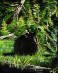A Bear in Tetons by latent-ookami