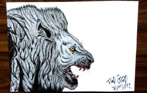 Lion by Patres68