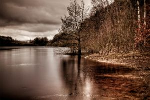 a tad drab by theoden06