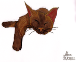 Siamese Cat by Markers by xtutorxheartx
