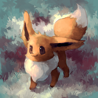Eevee by Cocoroll