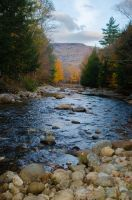 White Mountains  Fall Foliage  180 by FairieGoodMother