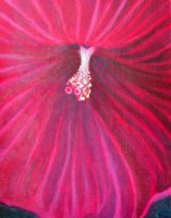 Hibiscus Painting by kimberly-castello