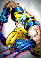 wolverine by lettherebeart