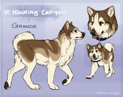 SR Greenland Dog - Grande by Sumac-Ridge