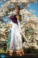 LoZ - A Sword Holds No Strength... by Eli-Cosplay