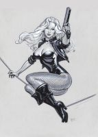 Black Canary by MichaelDooney