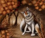 Autum Wolf by siwone