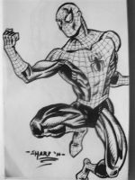 Spidey In Action Pose by FanBoy67