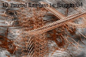 Fractal Brushes Set2 by Baggins04