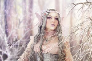 Winter Fairy by Manon-M
