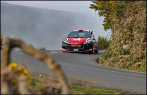 Peugeot 207 S2000 2 by Lancia-Stratos