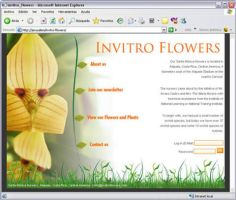 Invitro Flowers by InterGraphicDESIGNS