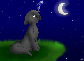 Cinderpelt by MidnightTheUmbreon