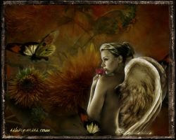 last angel_by reverie by diva7