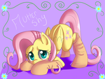 Sockie Flutter Shy by Pon3Splash