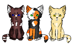 Warrior-Kit Adopts~ //CLOSED// by SNlCKERS
