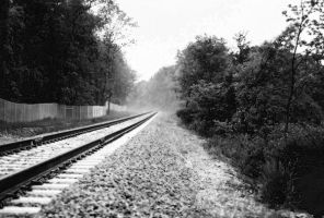 The Tracks by coog7444