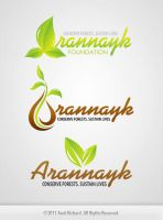 Arannayk Logo Samples by amitrichard