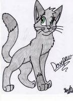 Dovepaw by Icewhisker16