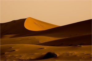 Dunes II by waleed-DP