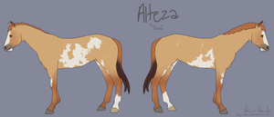 Alteza by dry-oasis