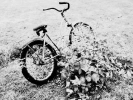 Old Bike No. 3 by Tusuami