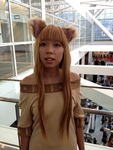 Spice and Wolf - Horo by DoktorKat