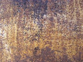 Texture 160 by Couch-and-Canvas
