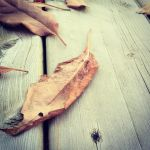 We all fall down... by GoldenChronos