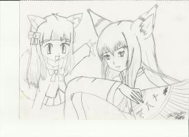 my drawing 2 foxs by noeltia19
