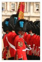 Trooping The Colour - 7 by syphonvector