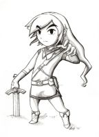 Adult Wind Waker Link by EternaLegend