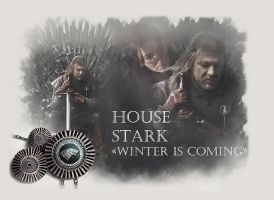 House Stark by vincha