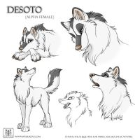 Sketches Desoto by TaniDaReal