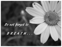 Do not forget to. by What-is-worth