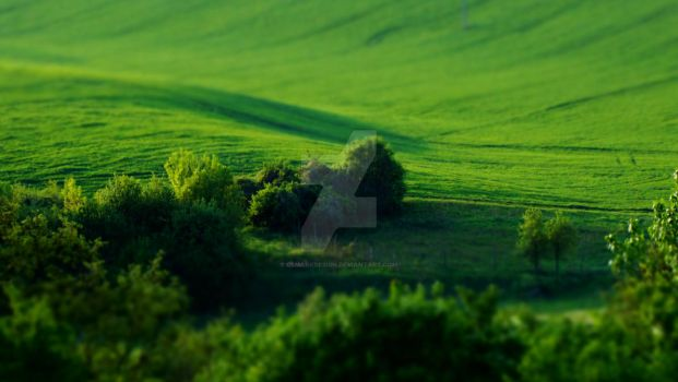 Green, green and green... by csmarkdesign
