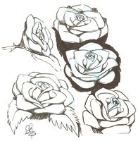 Sketch Dump : June 2015 : Roses by stinawo