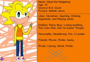 Slash the Hedghog bio by Wavespirit