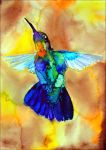 Fiery throated hummingbird by Verenique