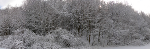Winter Panoramic by xdeathbybananax