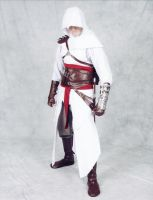 Assassin's Creed Cosplay 2 by Ectheo8