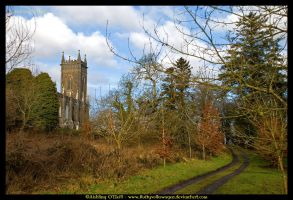 Kilbixy Church, Ireland by fluffyvolkswagen