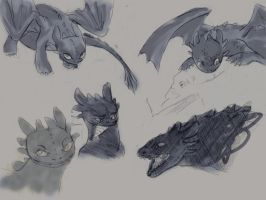 Night Fury sketches by kalapenaali