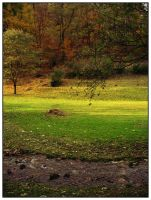 Autumn in Sarka by Lusor