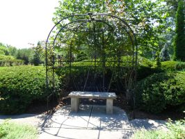 Rose Arch by TornPageDyedRed
